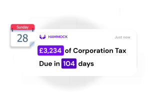 receive real time property tax notifications available at Hammock